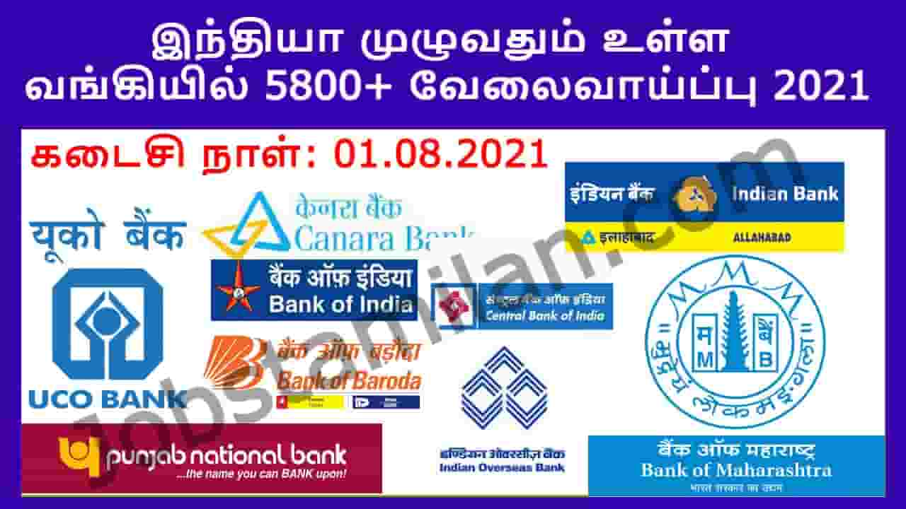 IBPS Clerk Recruitment 2021 Out - Apply Online 5800+ Post